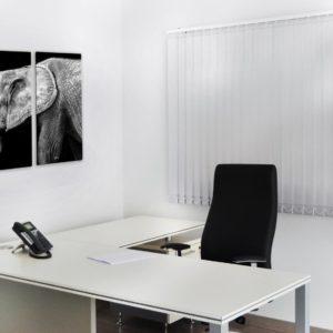 proyecto - 11 despacho